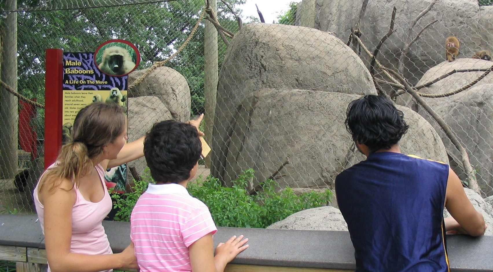 Zoo Kids LEAP